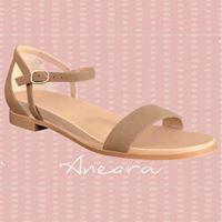 Anaera